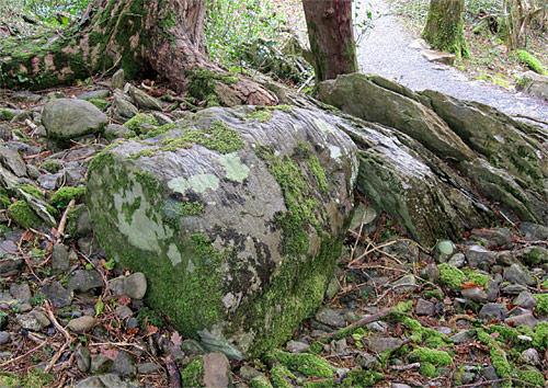 erratic killarney national park