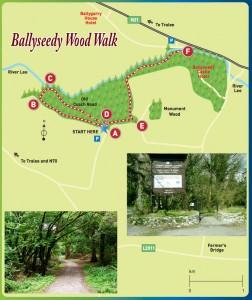 Ballyseedy Wood Walk